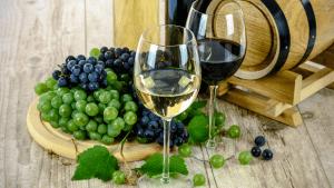 Decanter objavio listu najboljih vina